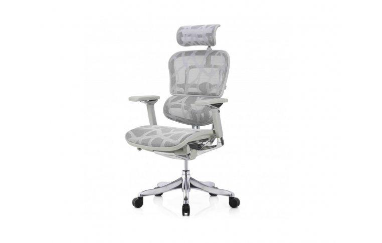 Кресла для руководителя: купить Кресло Ergohuman Plus Luxury (Ehpl-Ag-Ham) - 1