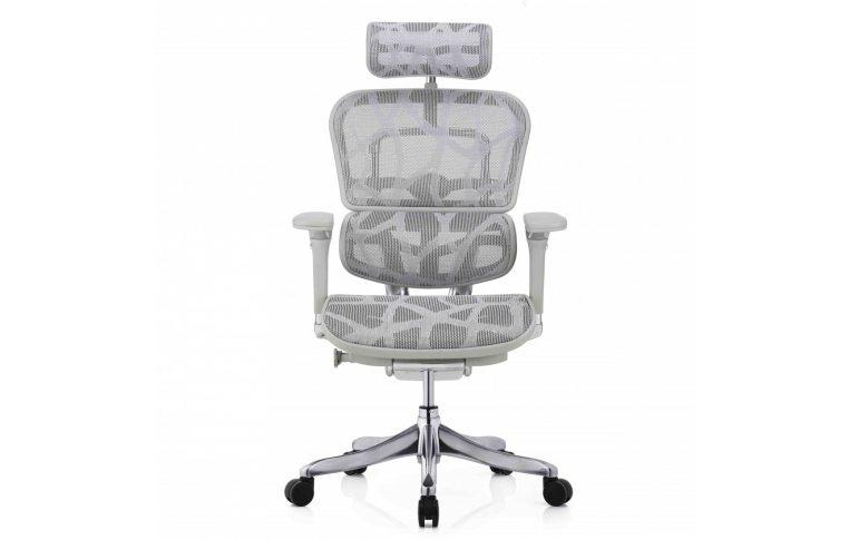 Кресла для руководителя: купить Кресло Ergohuman Plus Luxury (Ehpl-Ag-Ham) - 2