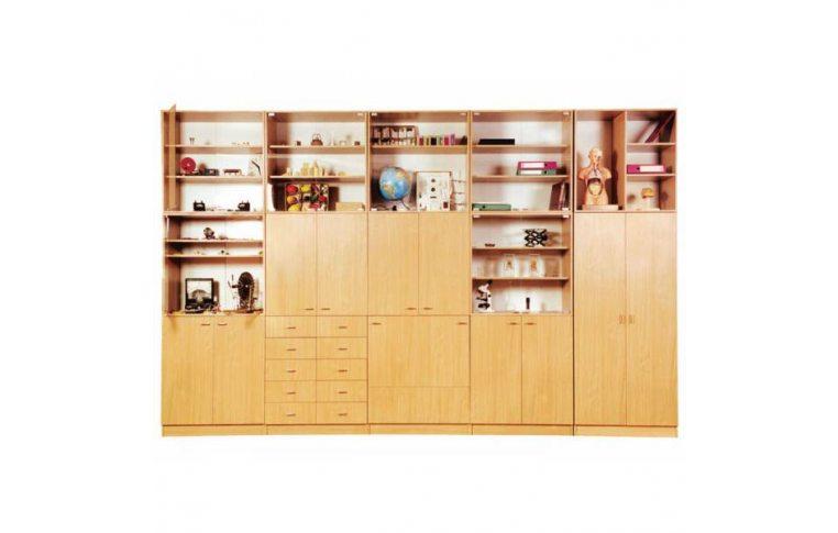 Школьные шкафы: купить Стенка для кабинетов истории, географии и биологии - 1