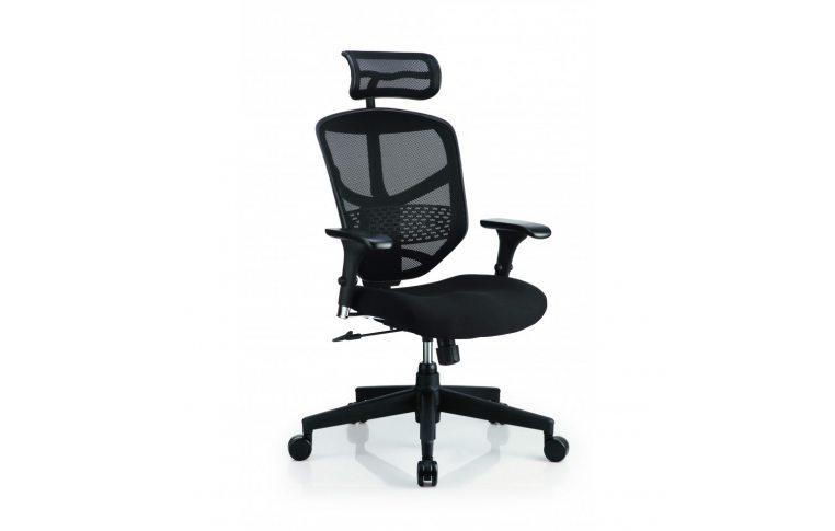 Кресла для руководителя: купить Кресло ENJOY BASIC (EJBS-HBM-F) - 1