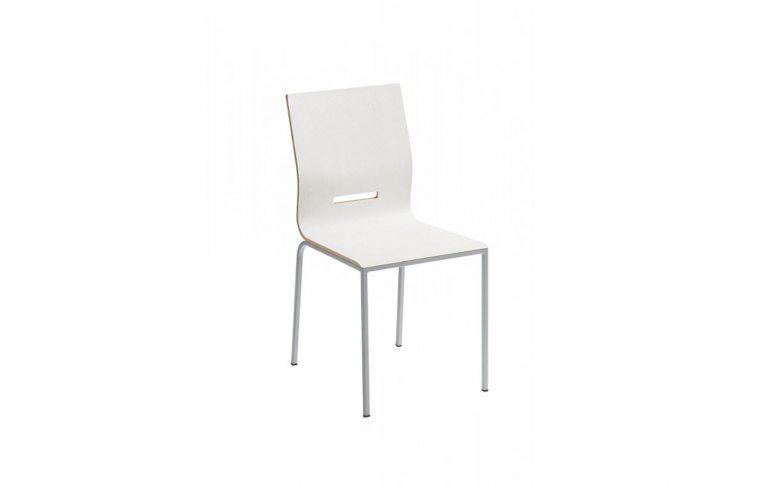 Кухонная мебель: купить Стул Manu 08MAN001 04 bianco lucido 8b Larice Chiaro - 1