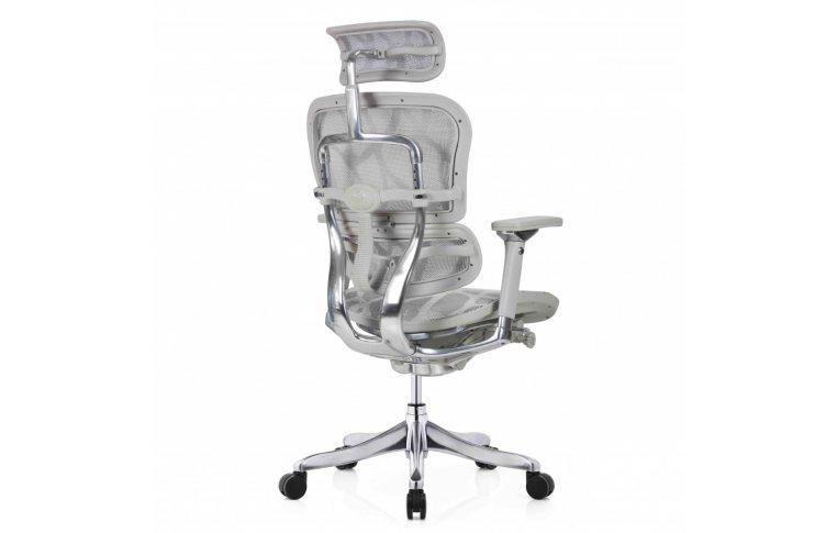Кресла для руководителя: купить Кресло Ergohuman Plus Luxury (Ehpl-Ag-Ham) - 5