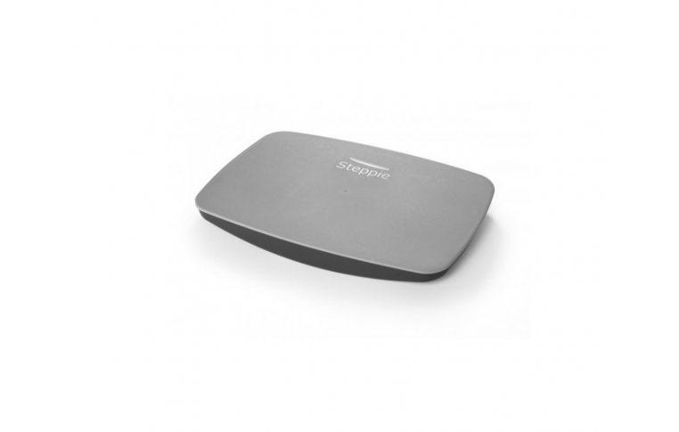 : купить Балансировочная платформа Steppie Balance Board - 1