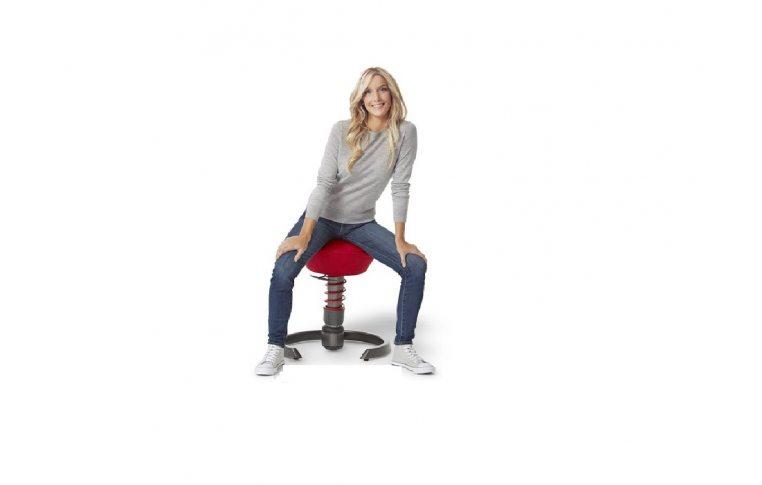 Эргономичные стулья: купить Динамический стул Swopper - 4