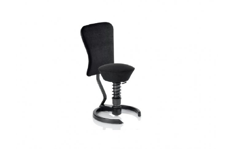 Эргономичные стулья: купить Активное кресло Swopper with backrest Dynamic - 1