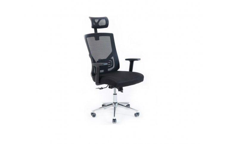 Кресла для руководителя: купить Кресло Роджер Richman - 1