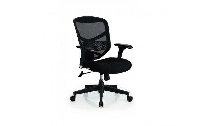 Кресла для руководителя: купить Эргономичное кресло для компьютера Enjoy Basic (EJBS-HBM-F) черный Comfort Seating Group - 1