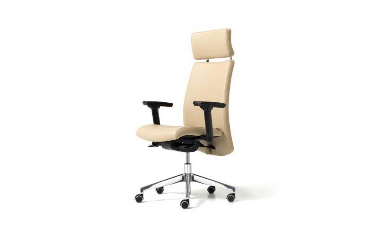 Кресла для руководителя: купить Кресло Duke Diemme - 1